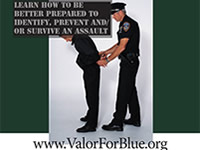 valor_for_blue